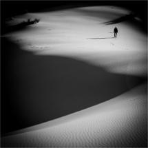 21 - Annick FOUCHE - Le marcheur solitaire